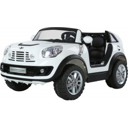 Ride On MINI BEACHCOMBER Original licence