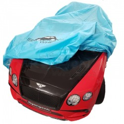 CHILDREN'S CAR PROTECTION HOOD 524500